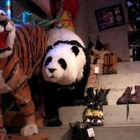 """<strong>Очень радует оформление магазинов. В торговом зале например стоят такие панды и тигры, а в примерочных различные статуи будды.</strong><br/> <span style=""""font-size:0.8em"""">Используйте стрелки чтобы листать изображения</span><br/> <a href=""""http://sengie.ru/gallery/user/sengie-man/516/12052""""><span style=""""font-size:0.8em"""">Комментировать(0)</span></a> <a href=""""http://sengie.ru/gallery/user/sengie-man/516/12052""""><span style=""""font-size:0.8em"""">Рейтинг:(0)</span></a>"""